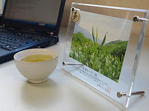 茶畑オーナー証