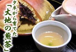 大地の煎茶