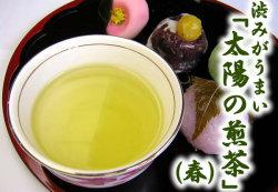 太陽の煎茶(春)